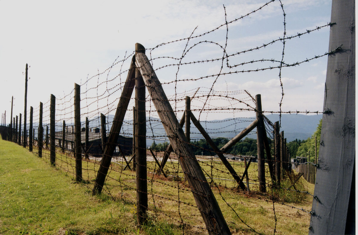 barbed wire fence concentration camp. Barbed Wire Fence Concentration Camp F